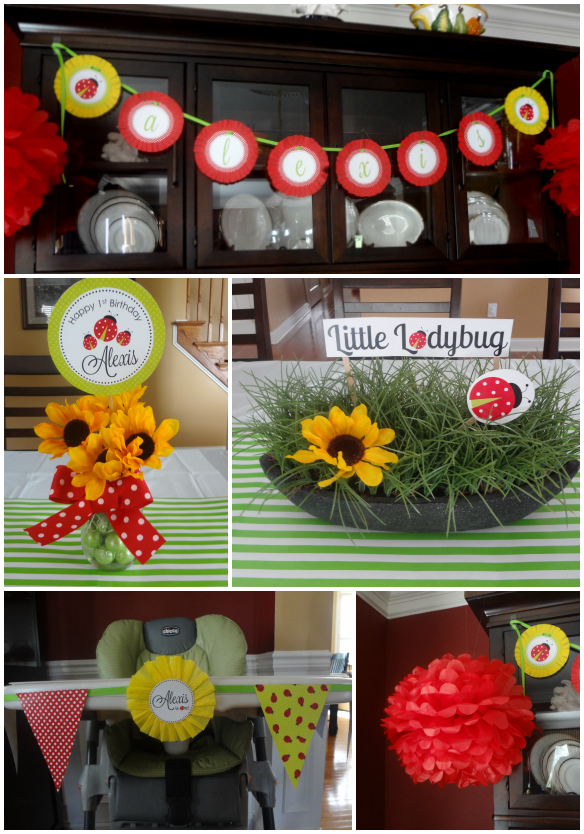 Little Ladybug Party Decorations